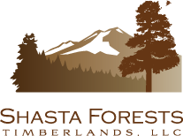 Shasta Forests Timberlands, LLC logo